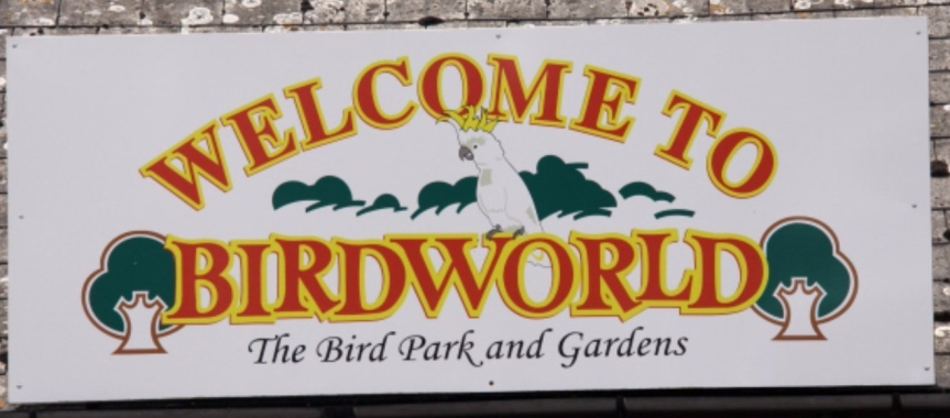 Birdworld review: A Great day out with the family.