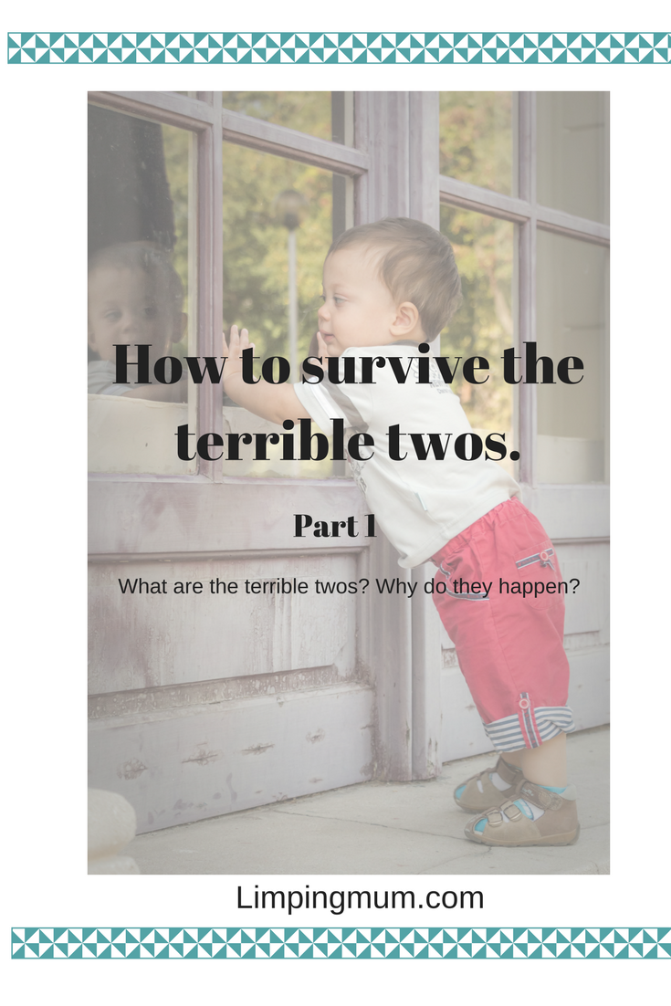 How to survive the terrible twos: Part 1